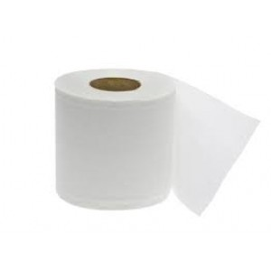 880299 - BATHROOM TISSUE CASE 96 ROLLS