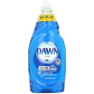 22205 - DAWN DISH LIQUID 24 OZ