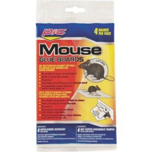 GMT-4F - MOUSE RAT GLUE TRAP 4 PK